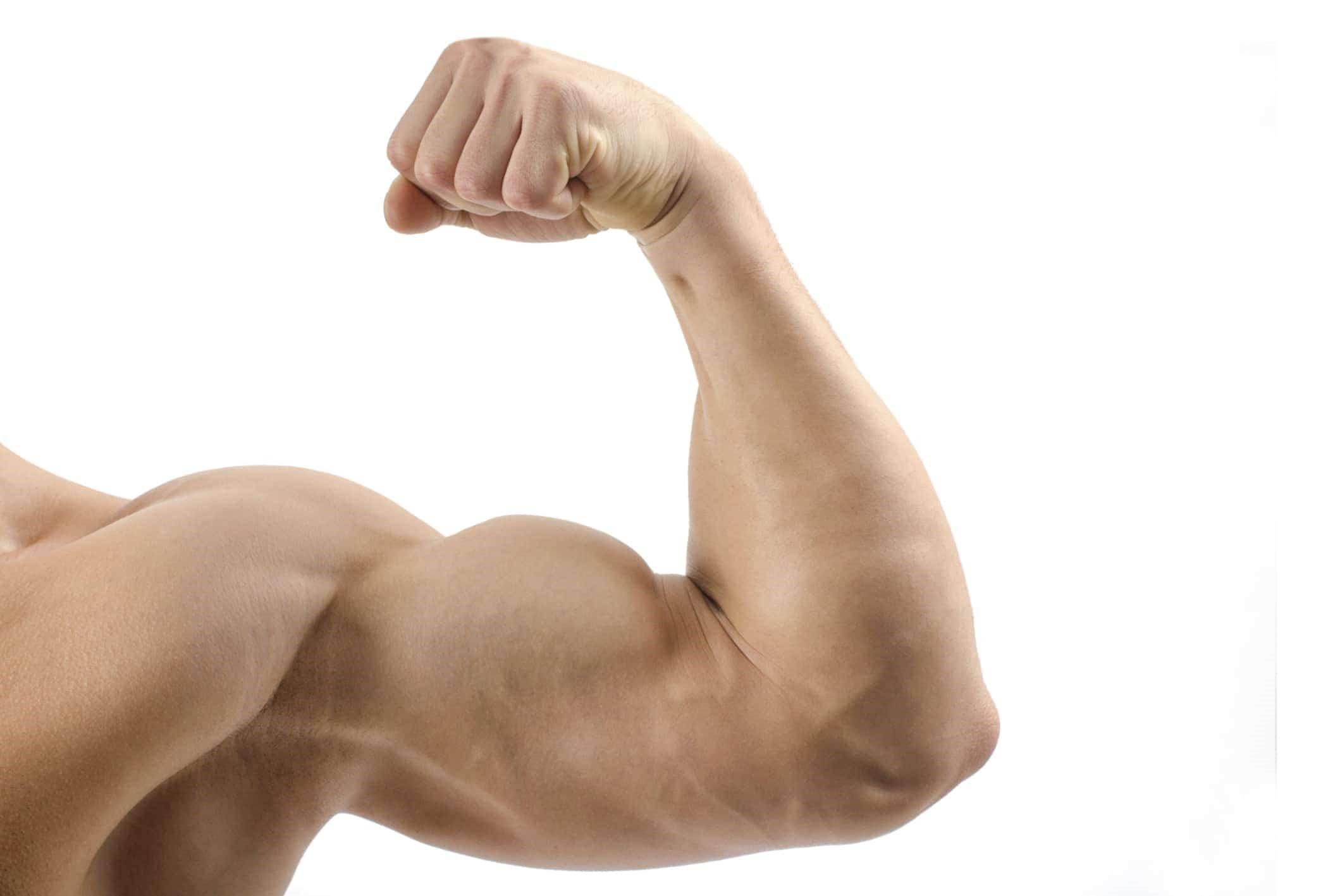 Fabbisogno proteico Crossfit